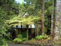 Self-catering chalet for rental Auckland North Island Waitakere Ranges. New Zealand