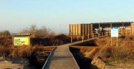Bird hide for birders and twitcher holidays in the delta del ebro nature reserve