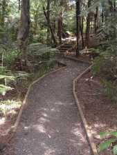 Path to Titirangi