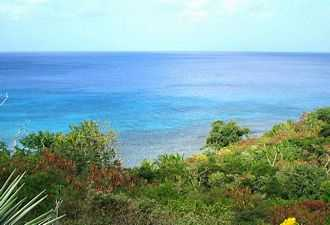 House for sale on the Grenadines