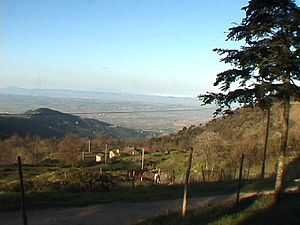 Cortona rural hilltop villa rental to rent, Tuscany Italy