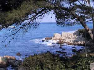 villa for rental Antibes in South of France France