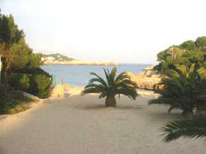 Beaches at Cala Dor Spain