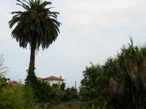 French Riviera  France land with derelict hotel for sale