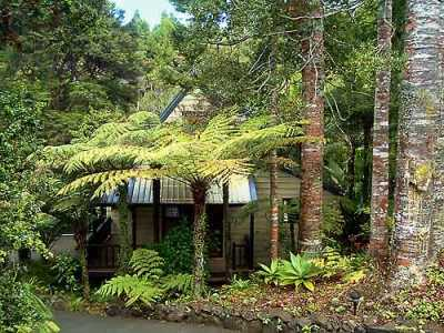 Titirangi rental accommodation near Auckland New Zealand for romantic holiday and honeymoon